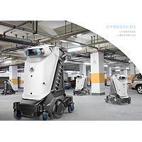 Service robot  for car market