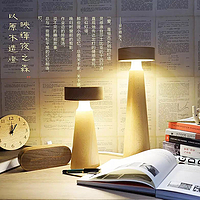 wood LED lamp
